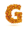 Autumn fall bright orange leaves letter vector image vector image