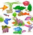 Aquarium fish seaweed underwater seamless pattern vector image