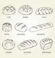 outline set of different kinds of bread vector image