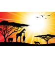 africa safari silhouettes vector image