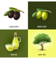Olive Design Concept vector image