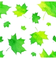 Watercolor painted green maple leaves pattern vector image vector image