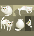 White cute cats vector image