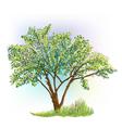 tree grass spring vector image