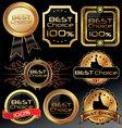 best choice elegant labels vector image vector image