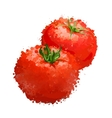 red tomatos of blots vector image