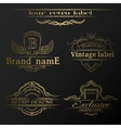 Set of vintage gold labels vector image