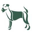 dog Irish terrier vector image