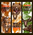 animal sketch banner set with bear deer and elk vector image vector image