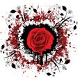 grunge rose vector image vector image