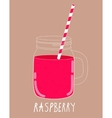 Fresh Raspberry Smoothie Healthy Food vector image