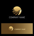 round abstract wave gold logo vector image