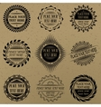 Set of vintage signs and labels vector image