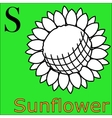 S letter alphabet Coloring book sunflower vector image