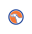 Greyhound Dog Head Side Retro Circle vector image