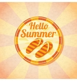 Hello summer retro background with beach slippers vector image