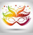 colorfull mask mardi gras carnival vector image
