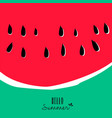 hello summer watermelon design for vacation season vector image