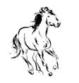Horse sketch vector image