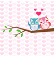 backgrounds with couple of owls vector image
