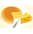 cheese and knife vector image vector image