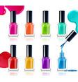 nail polish assortment vector image