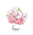 a small bouquet of apple tree flowers vector image