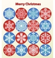 Christmas Card - snowflakes set vector image