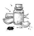 aloe vera juice in bottle hand drawn vector image