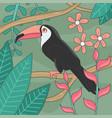 Beautiful toucan bird editable vector image