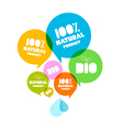 Colorful Natural Product Bio Green Labels Set vector image