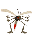mean mosquito vector image vector image