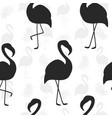 beautiful seamless pattern flamingo silhouette vector image