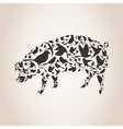 Pig from birds vector image