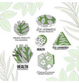 eco cosmetics logo set with leaves and flowers vector image vector image