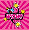 wow pop art comic camera stars vector image