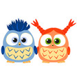 valentine day colorful poster with cute owl couple vector image
