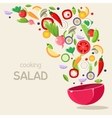 Cooking Salad vector image