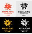 Star lion logo template vector image