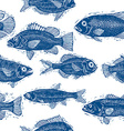 Freshwater fish endless pattern nature and marine vector image