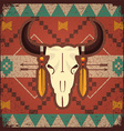 skull bull with ethnic ornament vector image vector image