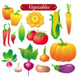 Vegetables vector image