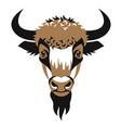 head of bison vector image