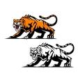 Aggressive tiger vector image vector image