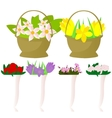Set of flowers in pots and baskets vector image
