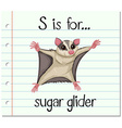 Flashcard letter S is for sugar glider vector image