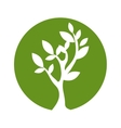 plant green nature vector image