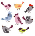set of cute birds set of cute birds vector image