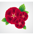 with flower bouquet on white background vector image vector image