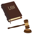 Law book and gavel vector image